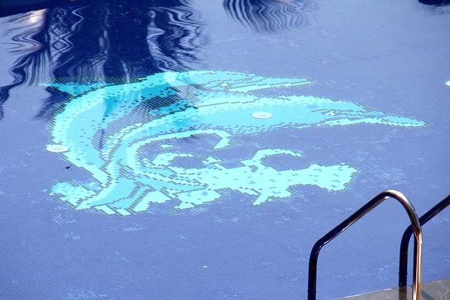 bazén s obrázky delfínů na dně